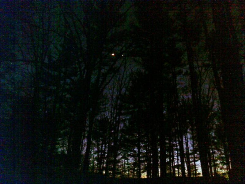 I photographed a stand of trees at late dusk; the moon and a nearby star shining through them look like a pair of spectral eyes.