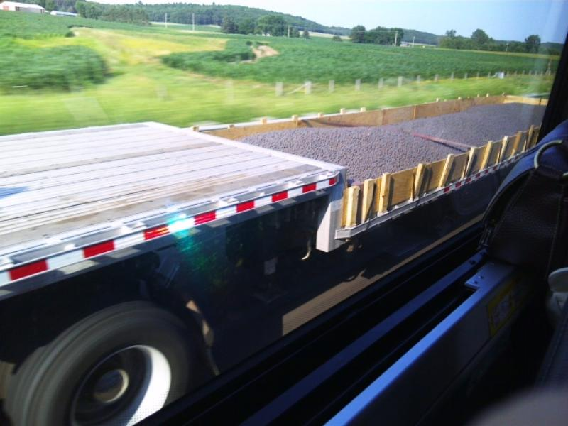 An 18-wheeler flatbed hauling blueberries